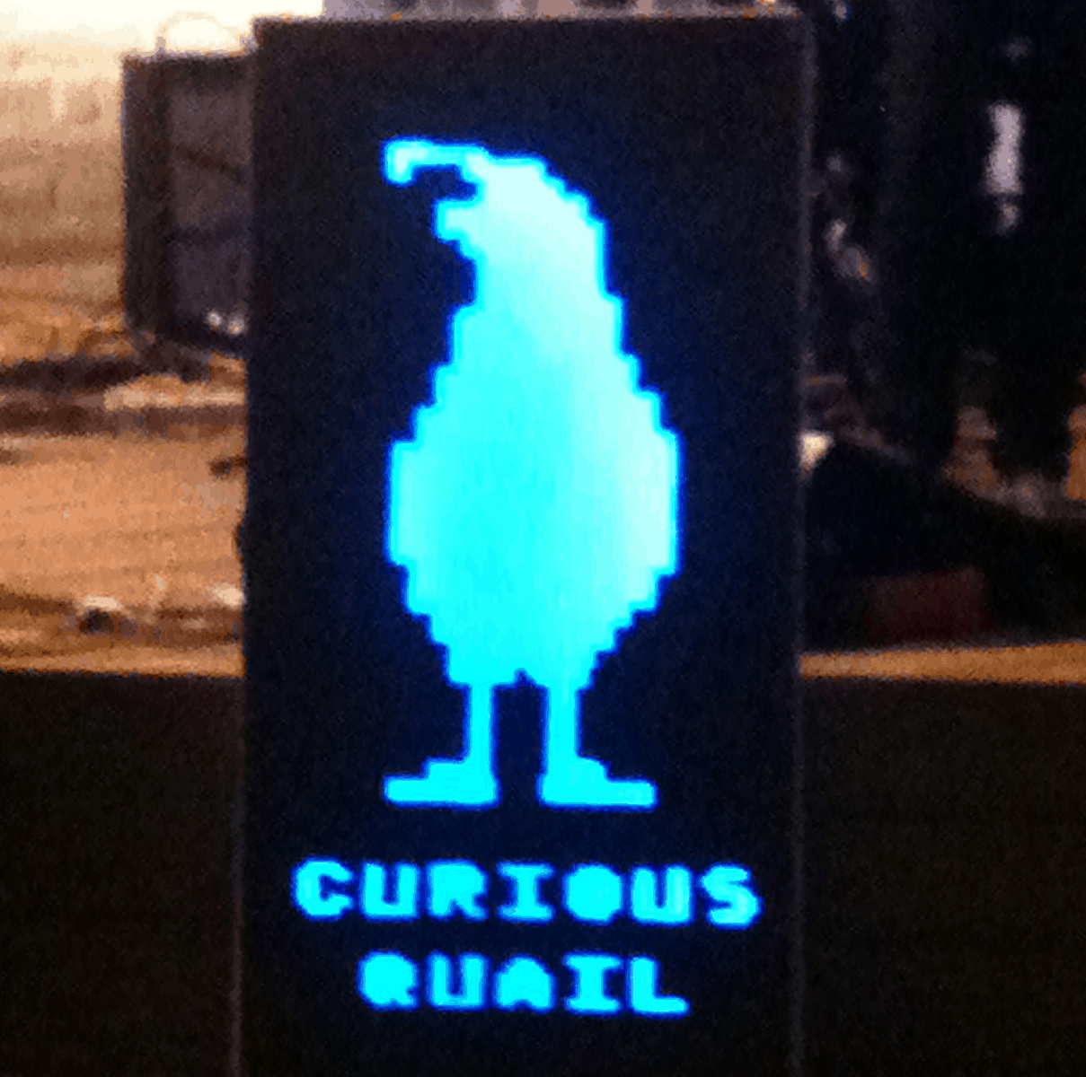 Curious Quail Stolen Violin Fundraiser